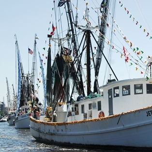 What to do at the 2015 Isle of Eight Flags Shrimp Festival