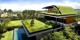 green-home-design-2