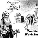 Why is Capitalism So Misunderstood?