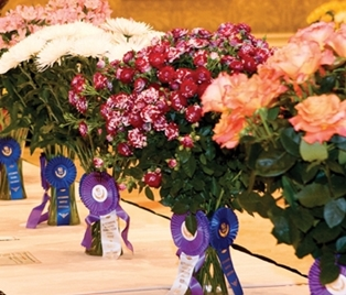 National Flower Competitions to Bloom in Amelia Island