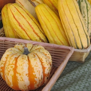 Pumpkin Season at Farmers Market in Fernandina Beach