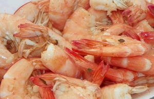 shrimp-festival-shrimp-taken-by-kimberly-kappel