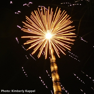 What's the Law on Fireworks in Fernandina, Amelia Island, or in Florida?