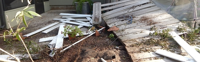 house-yard-damage-crop
