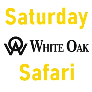 White Oak Saturday Safari