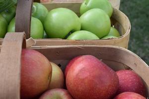 baskets-of-apples