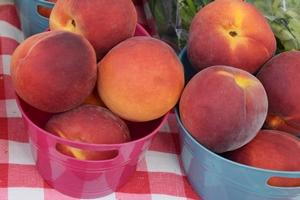 jan-09-fernandina-farmers-market